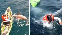 Shark vs. Man -- Who You Rootin' For?