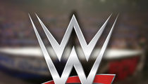 WWE Fan Dies in Stands at Live Event